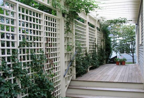 Arbor Photos Trellis Photos Fencing Photos Fairfax